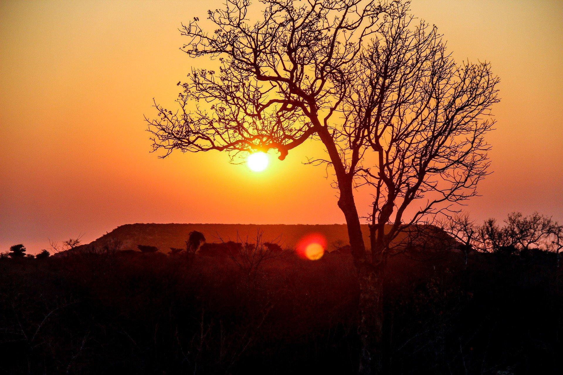 Madagascar : A la découverte de l'île aux merveilles