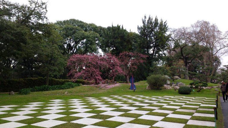 Les différents types de jardins : De quel type est le vôtre ?