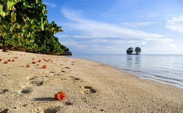 Partir aux Seychelles pour profiter du soleil et de la richesse de la nature